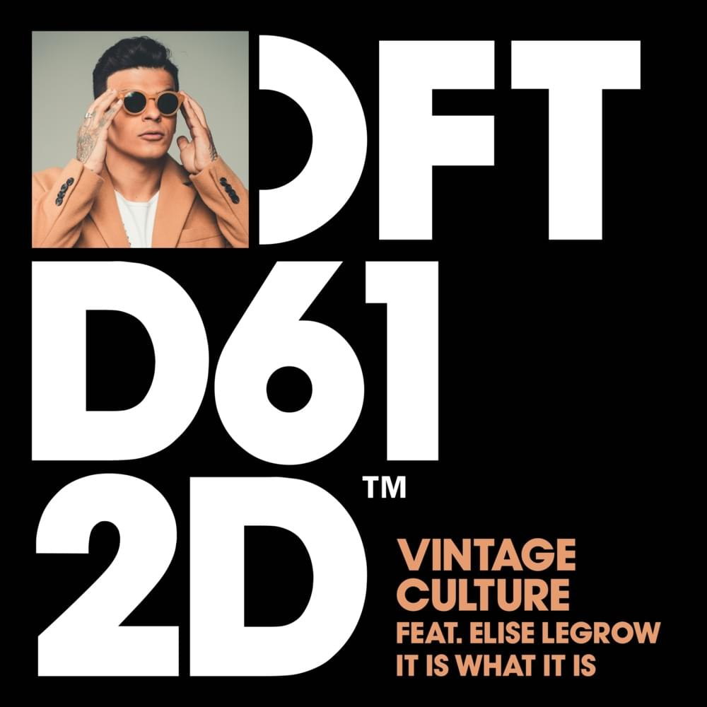 Vintage Culture - It is what it is (Defected Records)